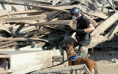 Στιγμιότυπα από τις έρευνες ΜΜΑΔ και ΕΜΑΚ στο σημείο της έκρηξης   Φωτογραφίες & VIDEO